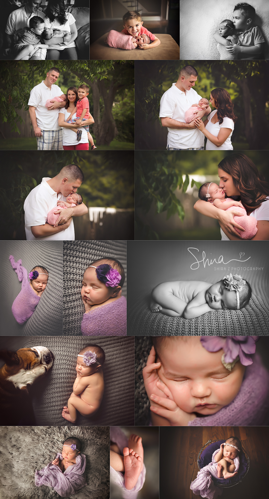 collage of a Long Island Newborn session photographed in purple with brother and parents